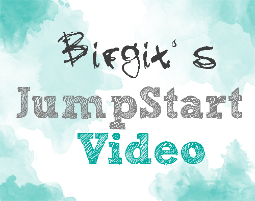 birgitsvideo