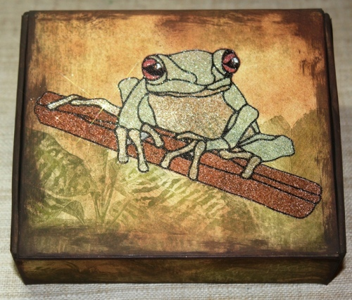 Red-Eyed-Tree-Frog-Box-using-Mica-LARGE